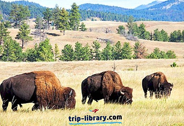 9 Najlepšie hodnotené turistické atrakcie v meste Custer, Južná Dakota