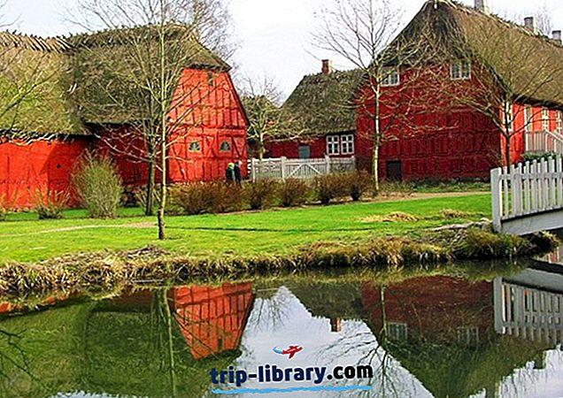 Danska kultura datiranja