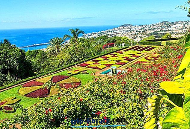 16 Tarikan Pelancong Terunggul di Funchal