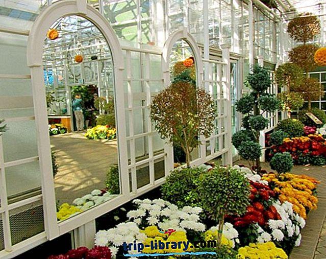 11 Najlepšie hodnotené turistické atrakcie v Grand Rapids, MI
