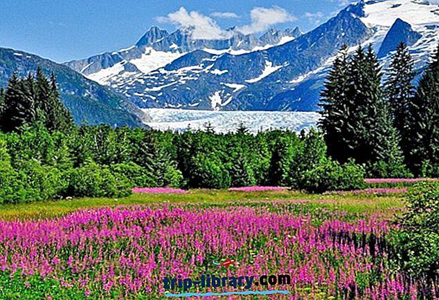 11 bestbewertete Touristenattraktionen in Juneau