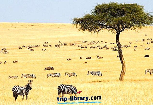 14 κορυφαία αξιοθέατα στην Κένυα