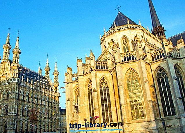 10 populaarsemaid vaatamisväärsusi Leuvenis