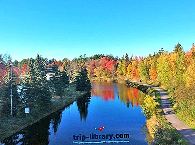 siti di incontri nel Nuovo Brunswick Canada Incontri a Lansing mi