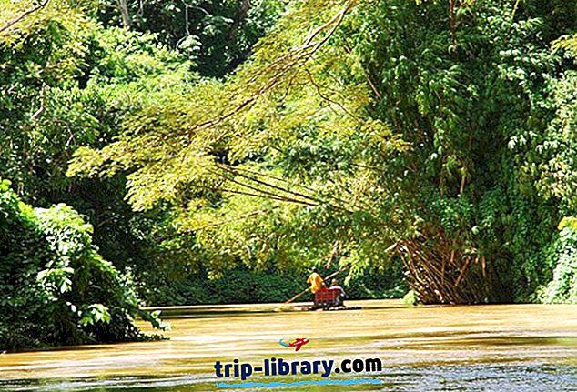 11 Atrações Turísticas mais votadas em Montego Bay