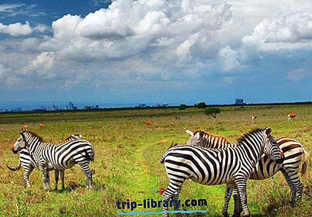 11 Topprangerte turistattraksjoner i Nairobi