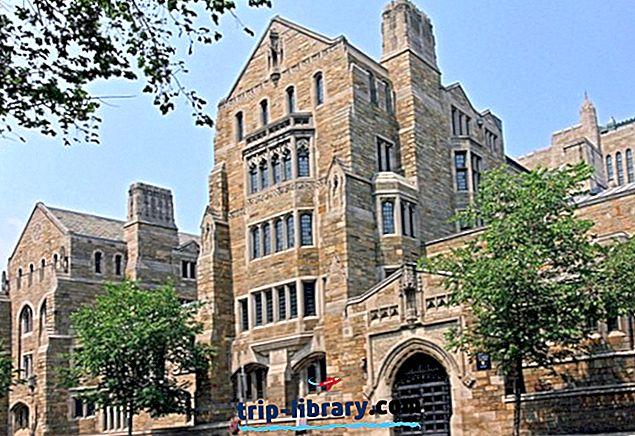 10 am besten bewerteten Sehenswürdigkeiten in New Haven