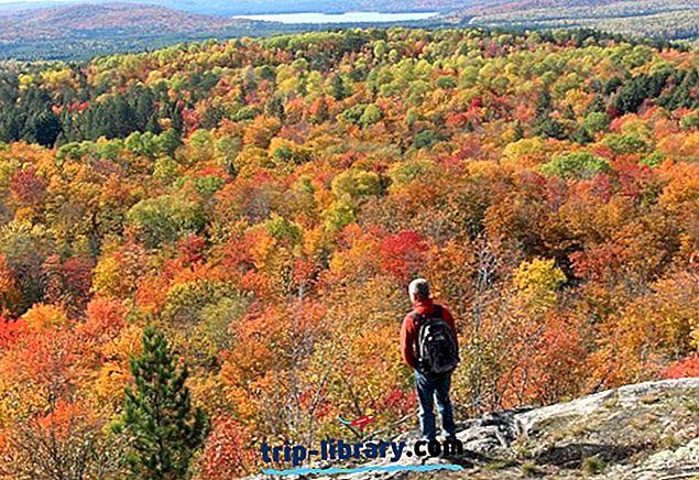 9 Nejlepší Turistické trasy v Algonquin Provincial Park