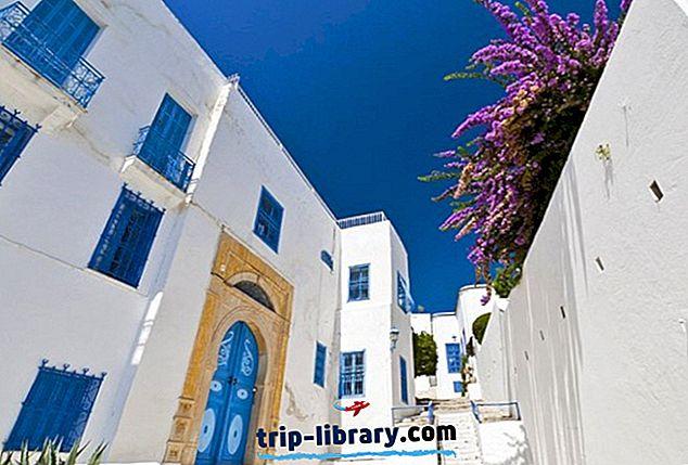 Istraživanje Sidi Bou Said: slikovito predgrađe Tunisa
