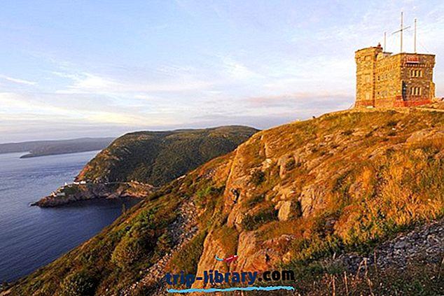 10 atracciones turísticas mejor valoradas en St. John's, Newfoundland