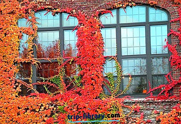 12 legnépszerűbb turisztikai látványosság, St. Paul, MN