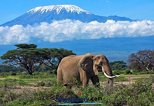 15 najbolj priljubljenih turističnih znamenitosti v Tanzaniji