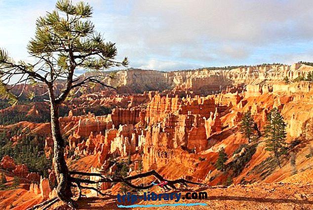 Bryce Canyon National Park, Birleşik Krallık için En İyi Kamp Alanları