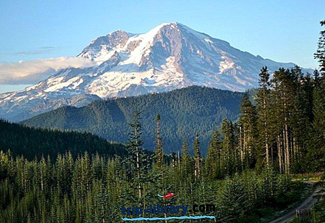 12 Parima riigi ja rahvuspargi Washingtonis