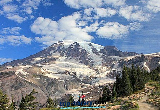 9 Lonjakan Nilai Tertinggi di Taman Nasional Gunung Rainier