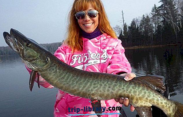 11 Bedst bedømte fiskeøer i Wisconsin