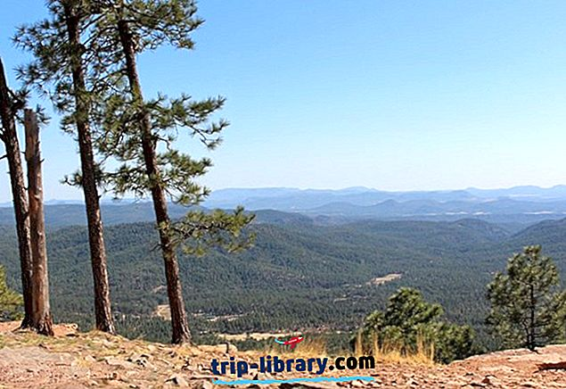 8 Top bewertete Campingplätze in der Nähe von Payson, Arizona