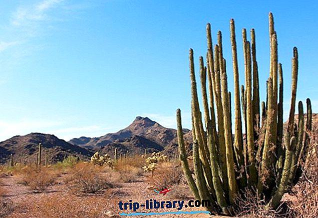 11 Nejlépe hodnocené kempy v Arizoně