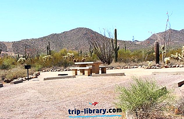 7 bedst placerede campingpladser i Phoenix-området