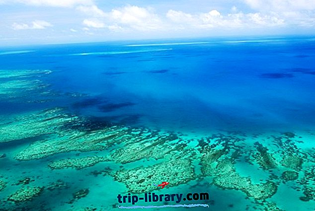 11 Nejlépe hodnocené turistické atrakce a aktivity v Cairns