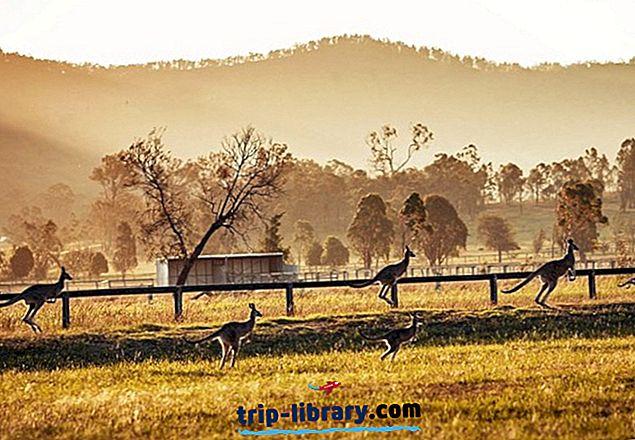 11 Najlepšie hodnotené veci v údolí Hunter, Austrália