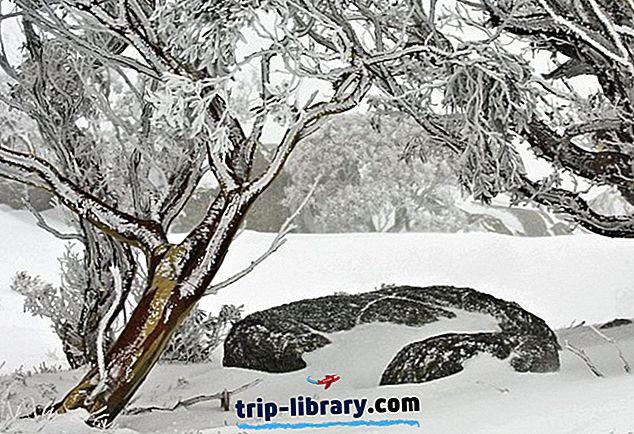 Poznávanie najlepších atrakcií zasnežených hôr, NSW