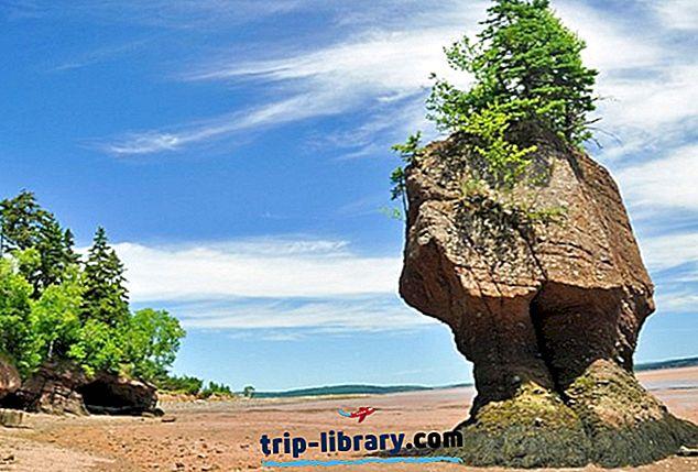 8 Nejlépe hodnocené turistické atrakce v zátoce Fundy