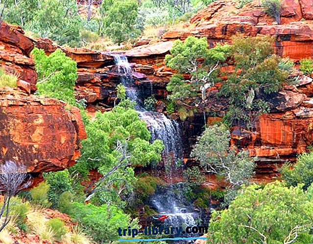 Erkundung des Watarrka-Nationalparks (Kings Canyon)