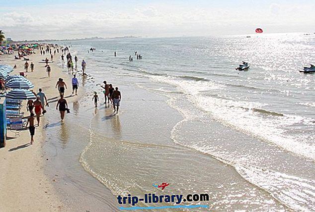 10 Bedst bedømte attraktioner og ting at gøre i Fort Myers