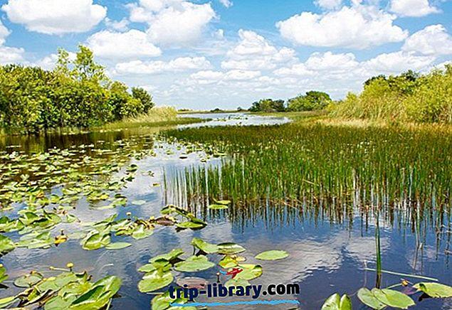 9 първокласни екскурзии от Маями