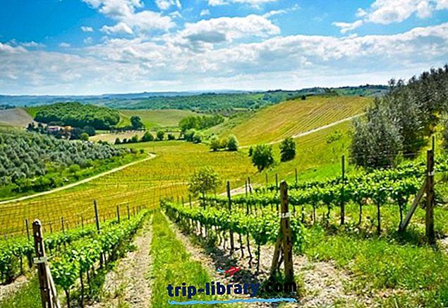 11 Hari Perjalanan Terbaik dari Florence