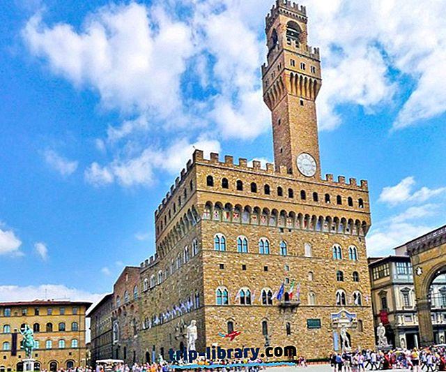 Utforska de 9 högst rankade palatserna i Florens: En besökarguide