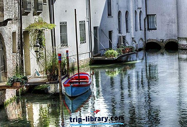 Pretura di Treviso, Sezione distaccata di Oderzo - Publications Office of the EU