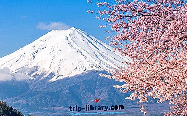 Explorando el monte Fuji: una guía para visitantes