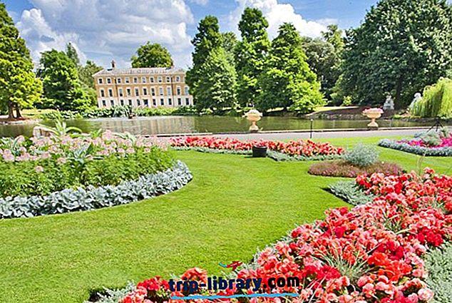 Erkundung der wichtigsten Sehenswürdigkeiten der Londoner Kew Gardens