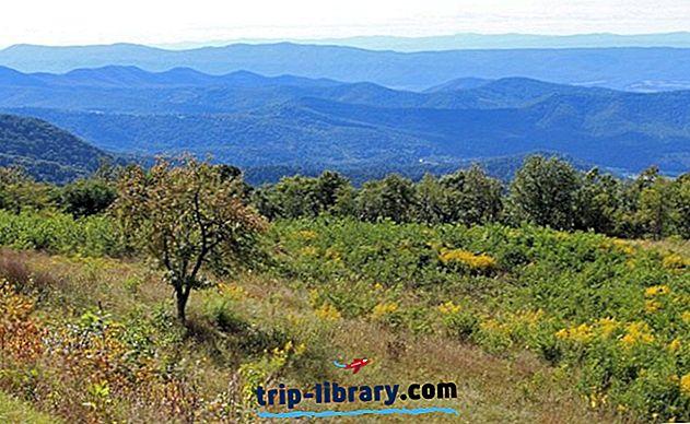 9 najboljših pohodniških poti v narodnem parku Shenandoah