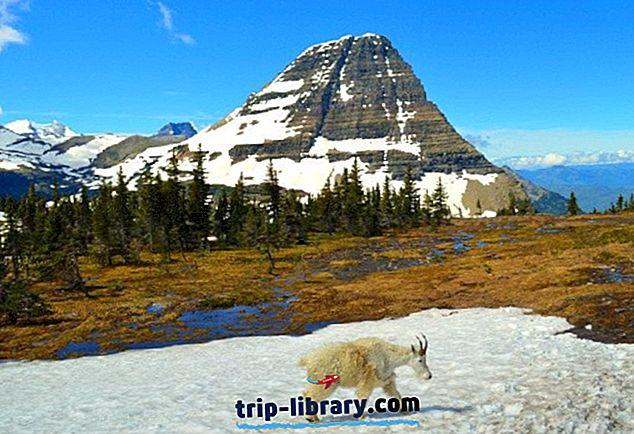 11 topprunnede steder å besøke i montana