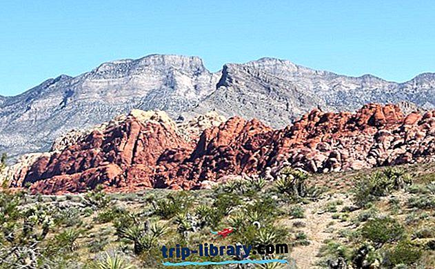 7 randonnées parmi les meilleures dans la zone de conservation nationale de Red Rock Canyon