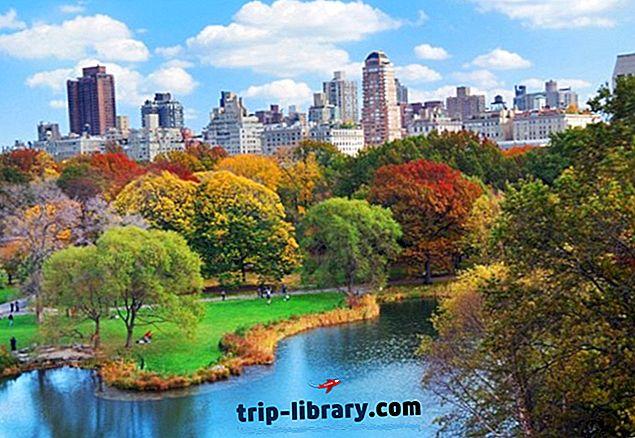 Посещение Центрального парка Нью-Йорка: 10 главных достопримечательностей