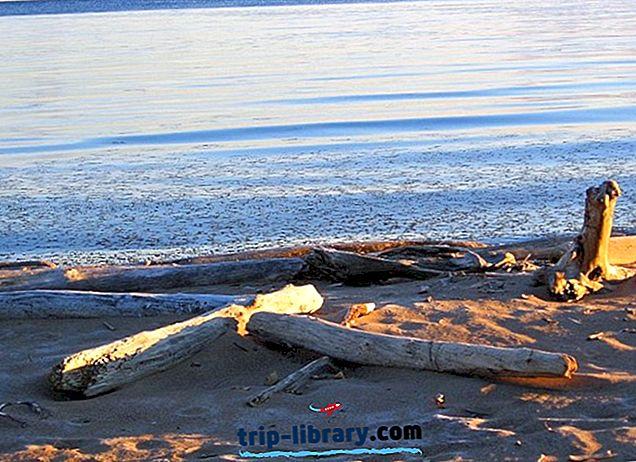 グレートスレイブ湖の歴史と遺跡:ビジターズガイド