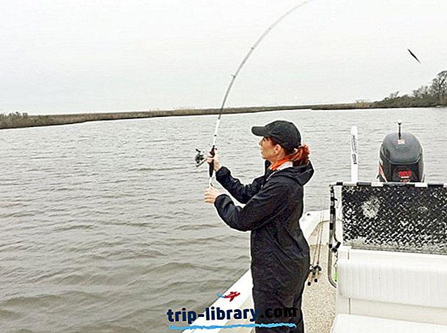 Sūraus vandens ir gėlavandenių upėtakių žvejyba Teksase ir 7 karštose vietose