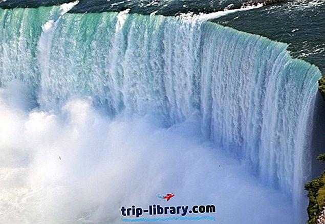 10 tipppäeva reisi Torontos