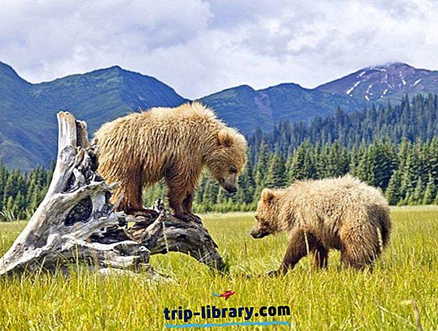 アラスカ州のトップ15の観光名所