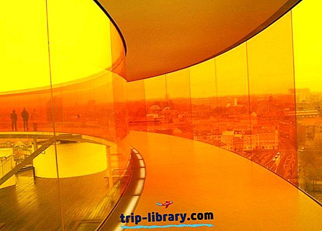 オーフス&簡単な日帰り旅行のトップ10の観光名所