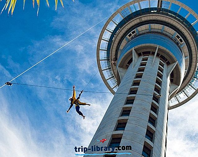 17 atracciones turísticas mejor valoradas en Auckland