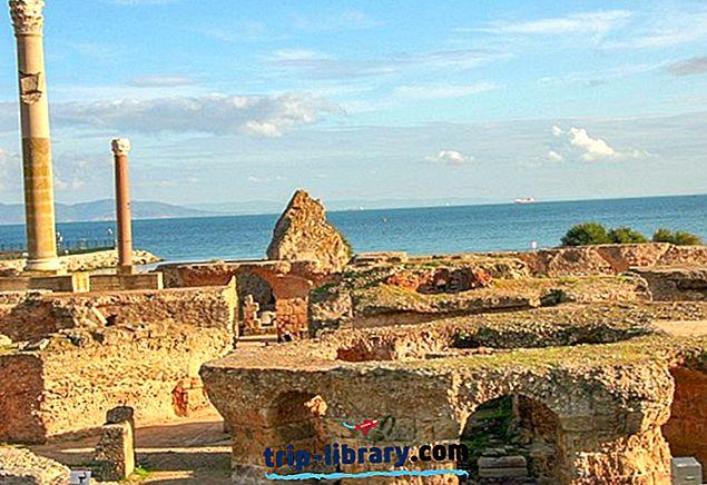 古代カルタゴの遺跡を探る:訪問者ガイド