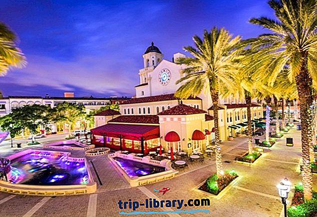 12 Nejlépe hodnocené atrakce a aktivity ve městě West Palm Beach