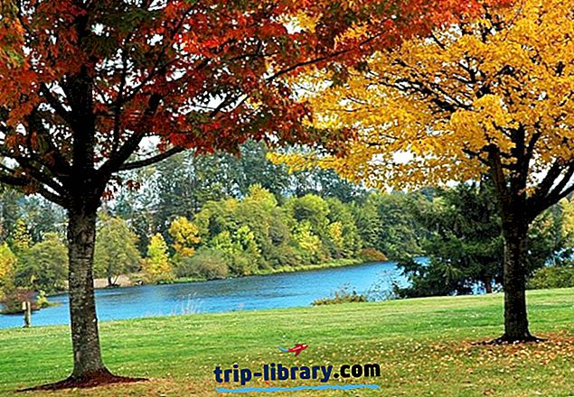 12 Topprankade turistattraktioner i Eugene, Oregon