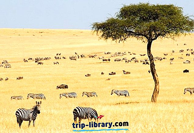 14 แหล่งท่องเที่ยวยอดนิยมในเคนยา
