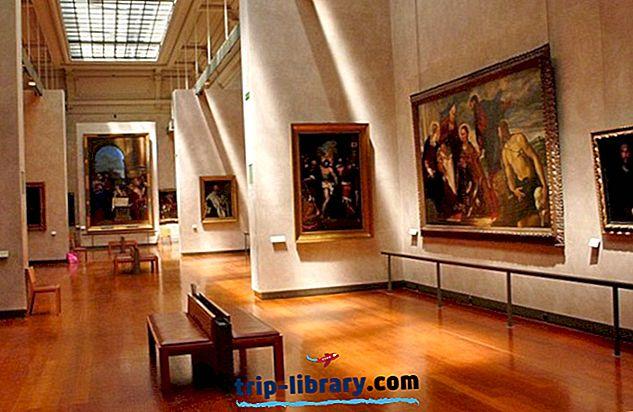 15 atracciones turísticas más valoradas de Lyon